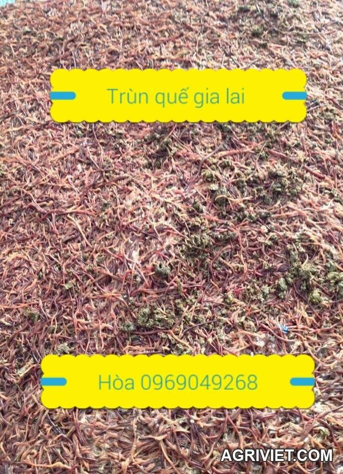 2015-12-10 21.22.01.jpg