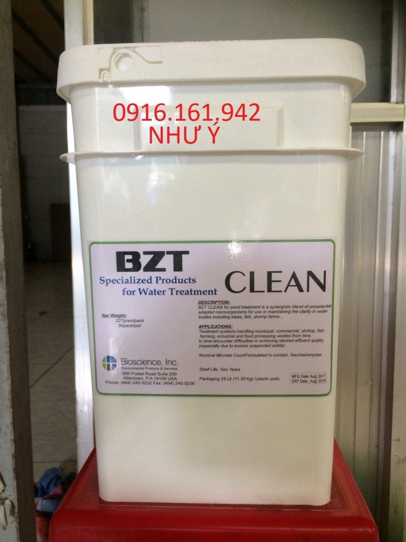 bzt-clean-11-2017-jpg.43677