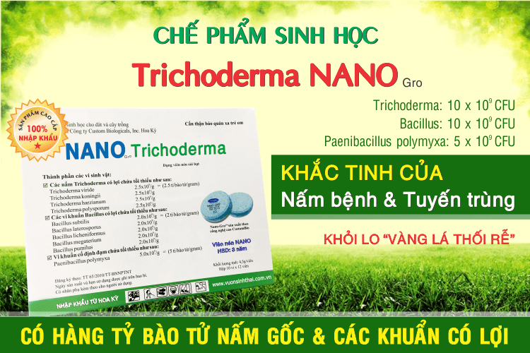 che-pham-trichoderma-nano-png.41659
