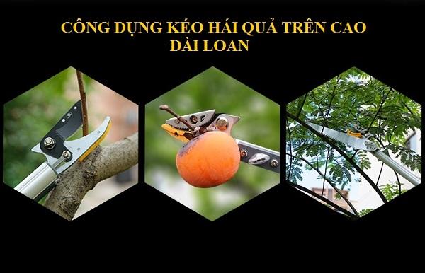 cong-dung-keo-hai-qua-jpg.31357