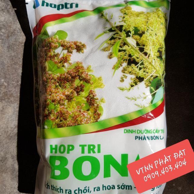 hop-tri-jpg.52001