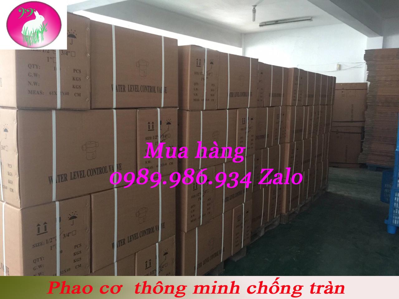 phao-co-thong-minh-jpg.45046