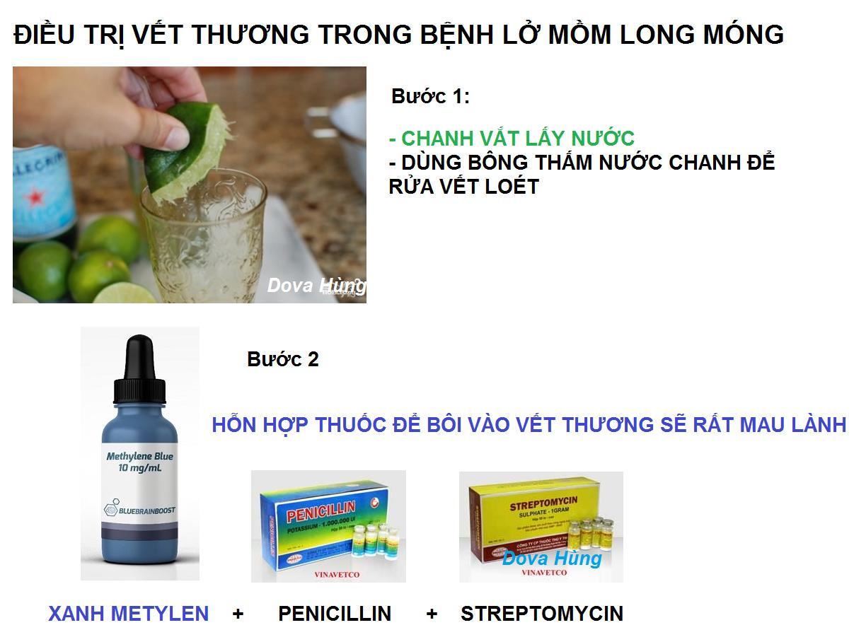 rua-vet-thuong-png.40984