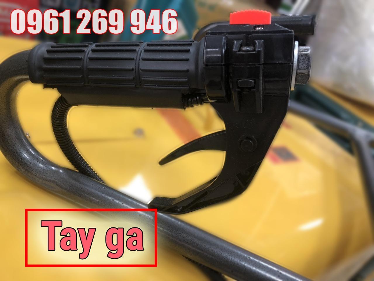 tay-ga-jpg.49850