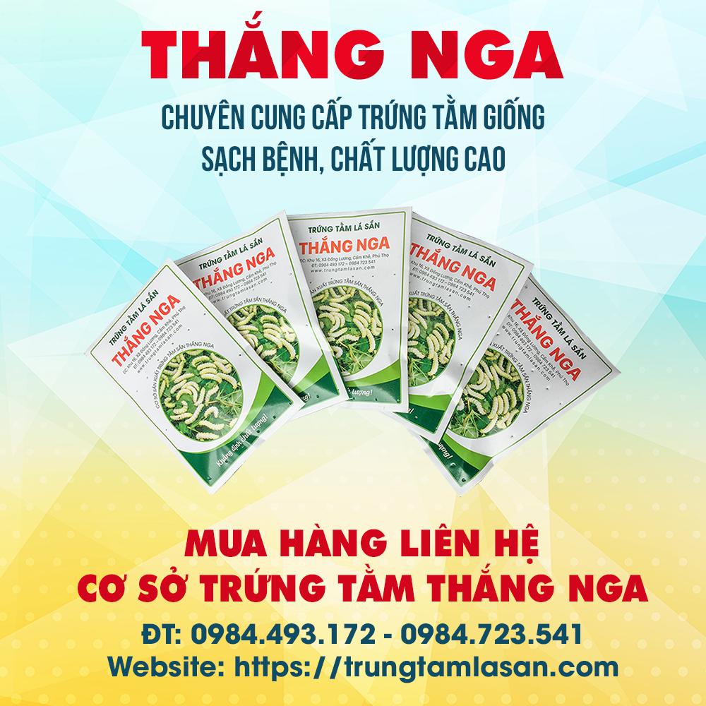 THANG NGA 7.png