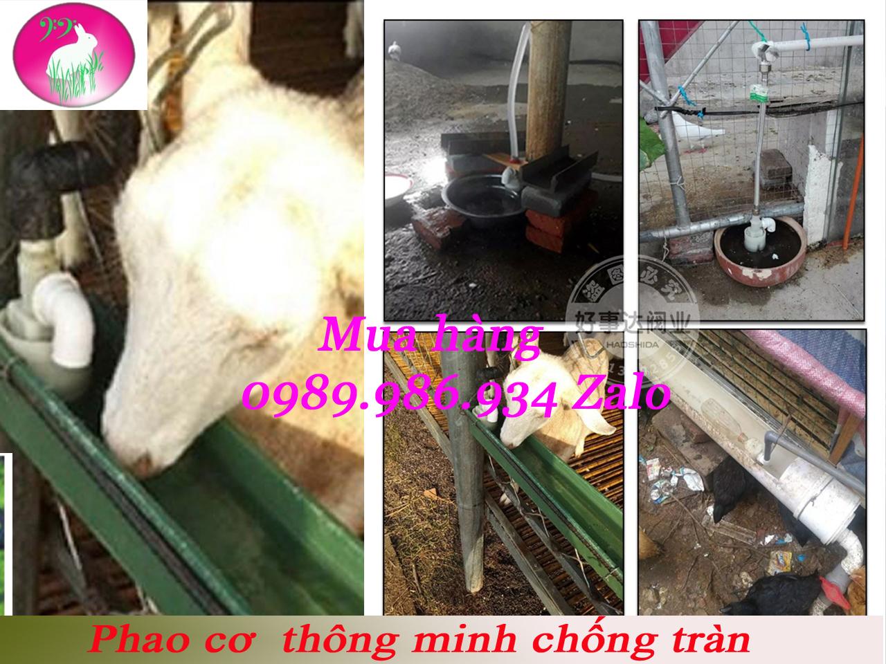van-phao-chong-tran-jpg.45047