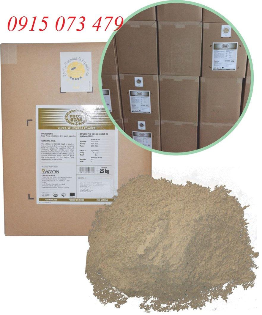 yucca-star-powder-va-jpg.49167